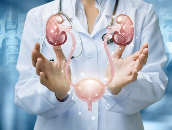 Gynecology and Urology